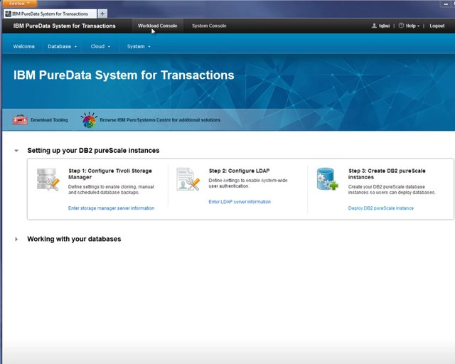 Optim Data Tools in PureData System for Transactions - Part 1