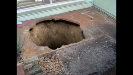 The Sink Hole