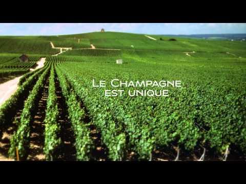 Taste Texas | Connoisseur:  Champagne Campus - le teaser