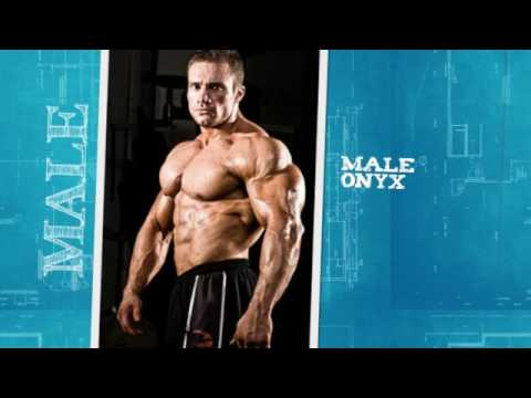 Male Onyx Male Onyx Your diet should include