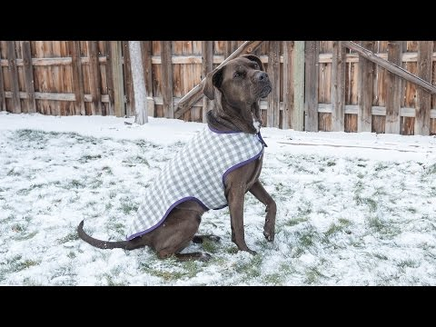 How to Sew a Dog Coat - Pattern and Assembly