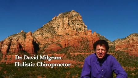 Dr Dave Milgram Holistic Chiropractor