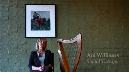 Ani Williams Nu Clear Frequencies CD Sound Therapy April 6th, 2011