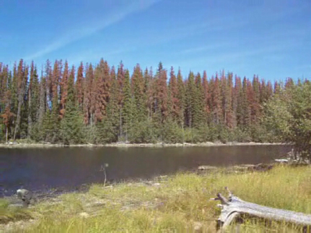 KAYAK / CANOE / GPS in BC Canada!