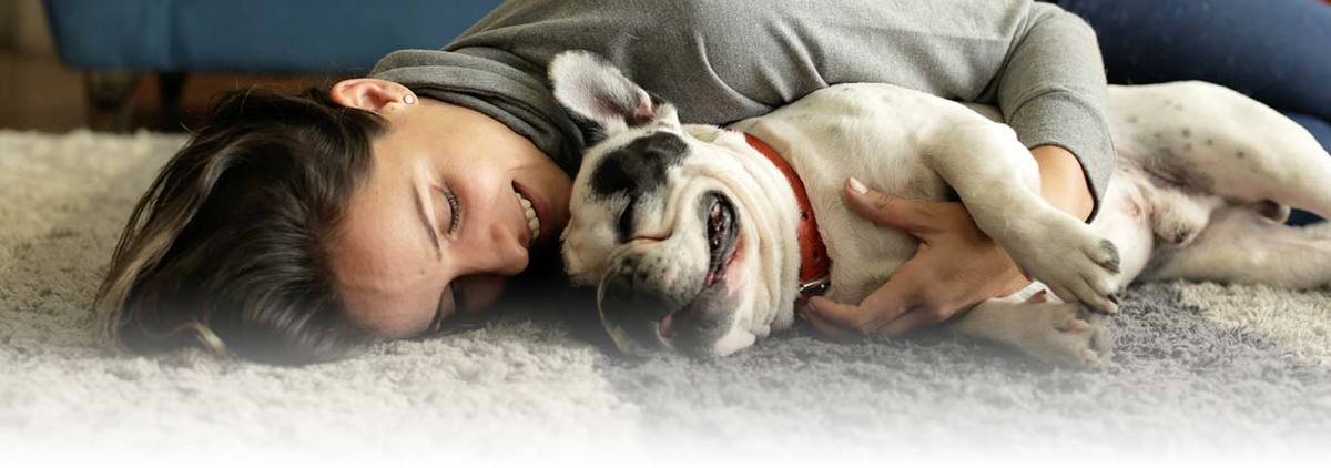 Be playful with your dog and get traits in you