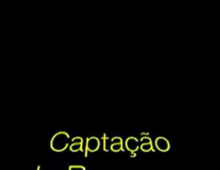 Contemplo_2008