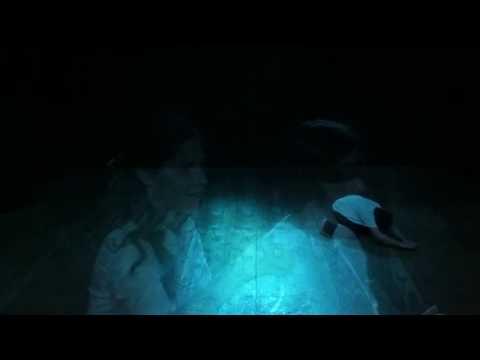Vídeo Projeto Arteiros (com dançarinos surdocegos)