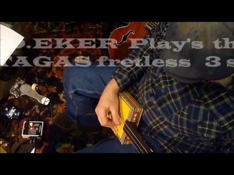 Partagas Fretless 3 String      A D Eker 2016    BlackCatBone CBG'S