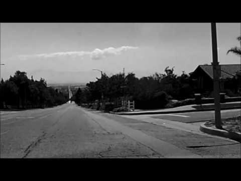 La Avenida Del Lobo
