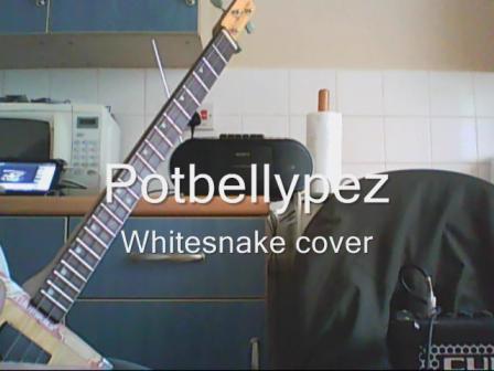 whitesnake cover