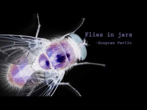 FLIES IN JARS