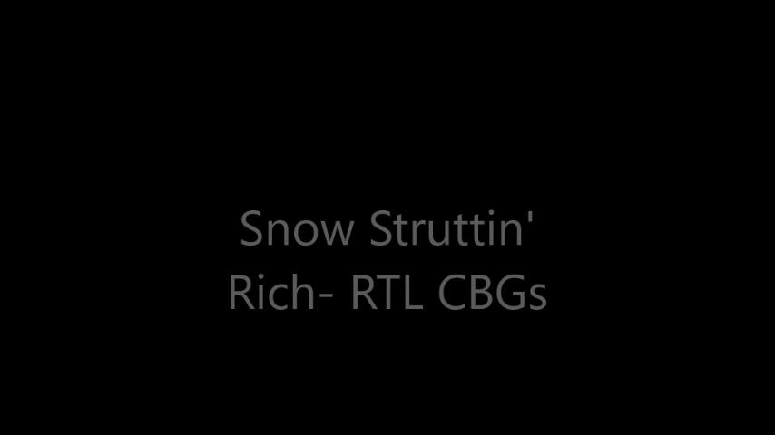 Snow Struttin'