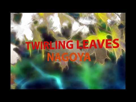 Twirling Leaves Nagoya           A. D. Eker     2018