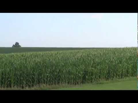 Soil management strategies
