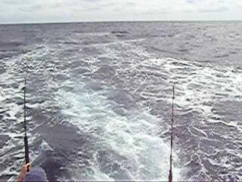 Joe Dunsavage Memorial at Sea