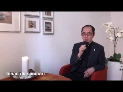 Peter Persmans Videoblogg