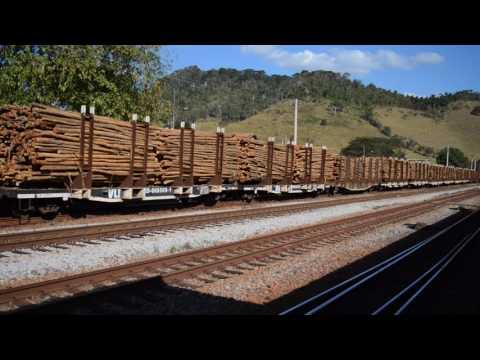 Trem de toretes da EFVM passando por Desembargador Drumond