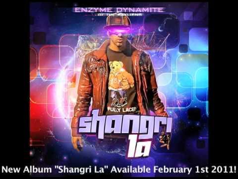 Celebrity-Enzyme Dynamite