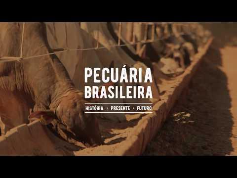 Pecuária Brasileira - História, Presente e Futuro - História da Pecuária - Parte 1