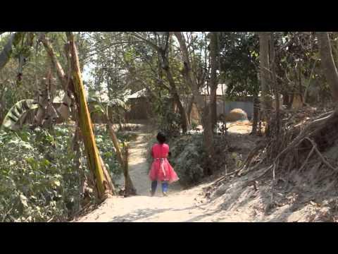 Feeling the heat -Chilli farming in Bangladesh