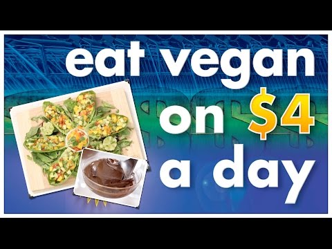 How To Eat Vegan On $4 A Day | Recipes & Resources