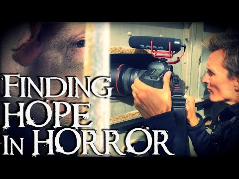Filming Murder, Finding Hope   Earthlings Creator Interview [Non-Graphic]