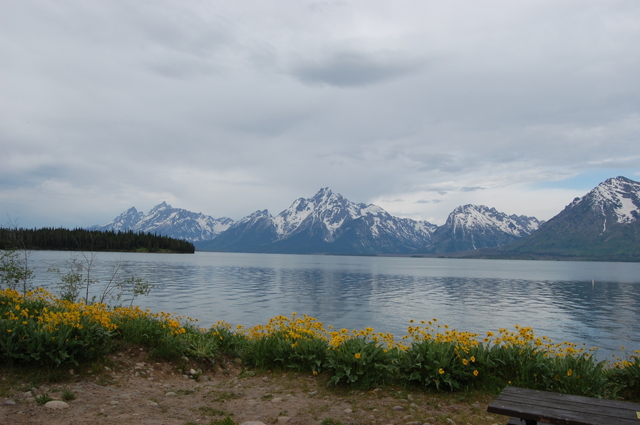 Grand Tetons & Yellowstone 081