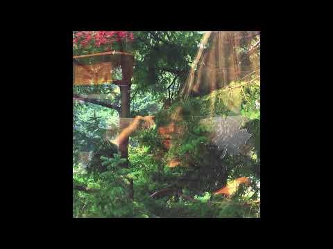 Jennifer Castle -  Rose Waterfalls