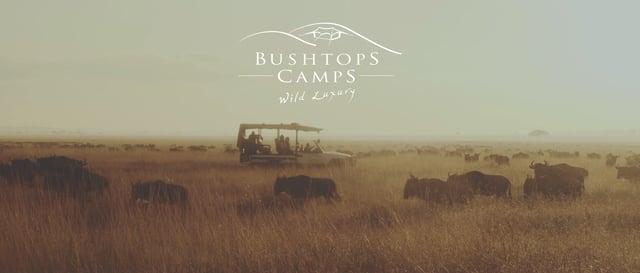 Roving Bushtops