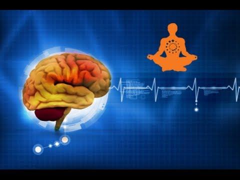 Protect Your Brain & Mitochondria w/ Upgraded™ Aging Formula (Oxaloacetate)