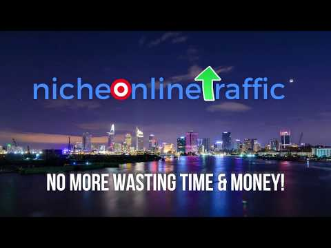 NicheOnlineTraffic.com-Buy Online Traffic for Dropshipping, Ecommerce, Shopify, Amazon & Businesses