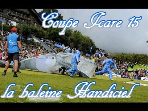 Baleine  HANDICIEL Coupe Icare 15
