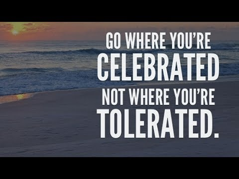It's Better To Be Celebrated Than Tolerated - NMPRO #1,084