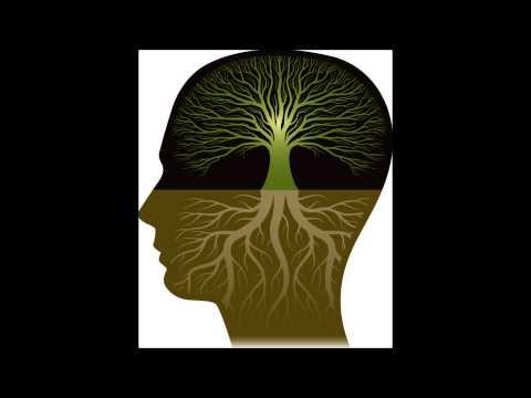 Rudolf Steiner - the path to knowledge