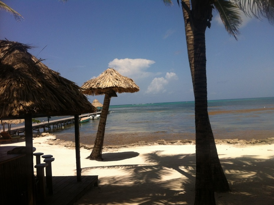 Belize TDLL Show - 43