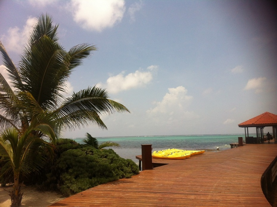 Belize TDLL Show - 41
