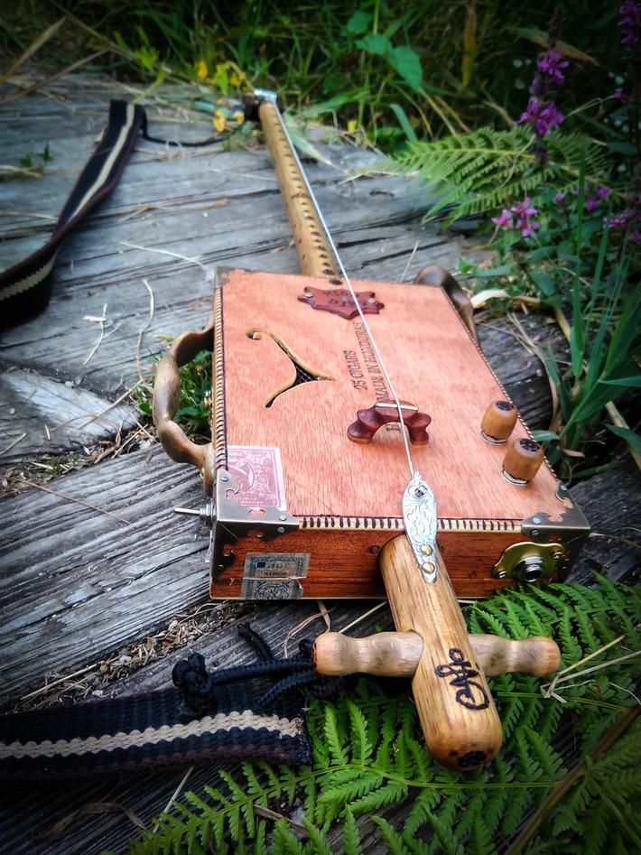 Fox Kestrel - Diddley bow