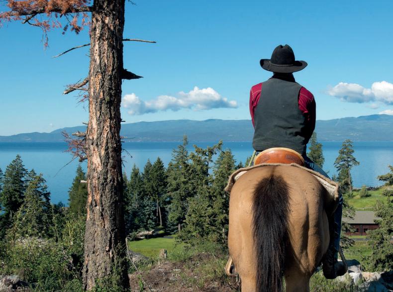 De nieuwe generatie cowboy Montana