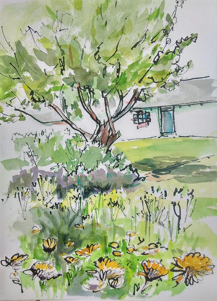 Marlay Apple Tree. 23rd July 2019