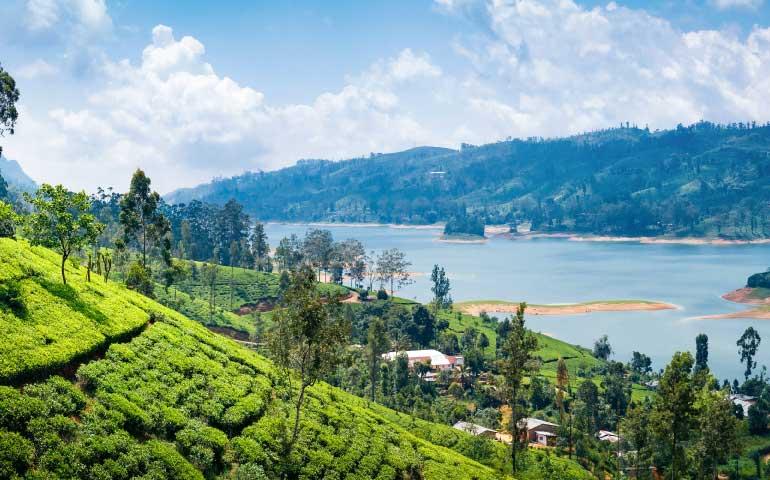 SriLanka Visa Application Form | Akbar Travels