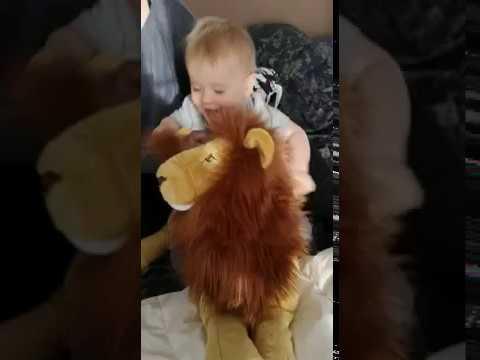 la chevauchée fantastisue d'Arthur sur le roi lion
