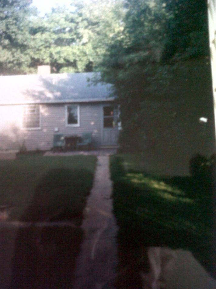 3210 Backyard beginning