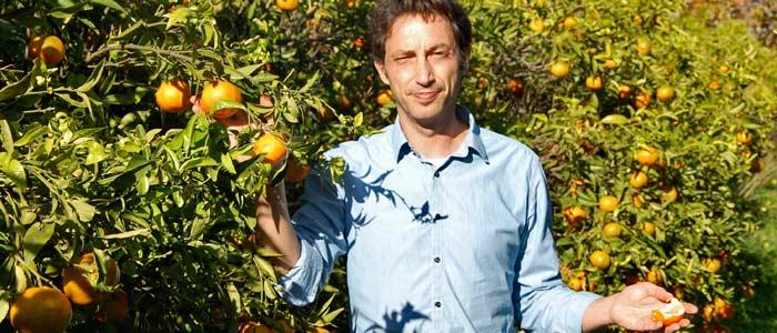 naranjas ecologicas online