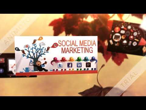 Social Media Panel Reseller