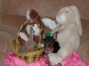 Lucy Belle says Happy Easter