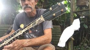 1876-1886 Buckbee banjo