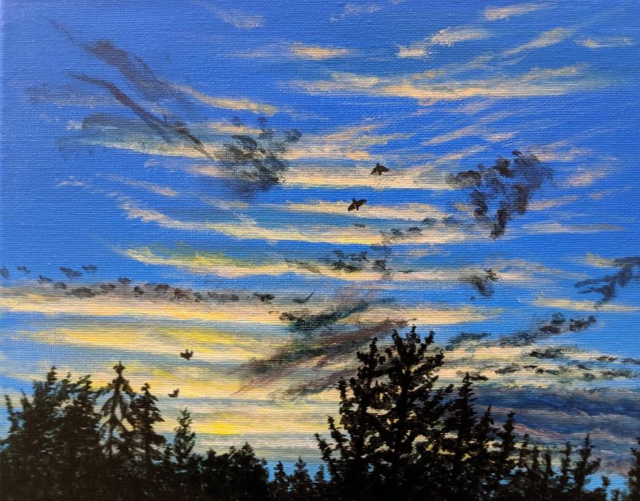 2019-35 Sunset - tired birds heading home
