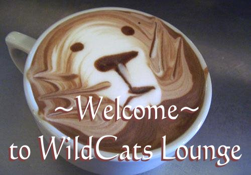 The WildCats Lounge