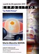 Histoire du Petit Prince...