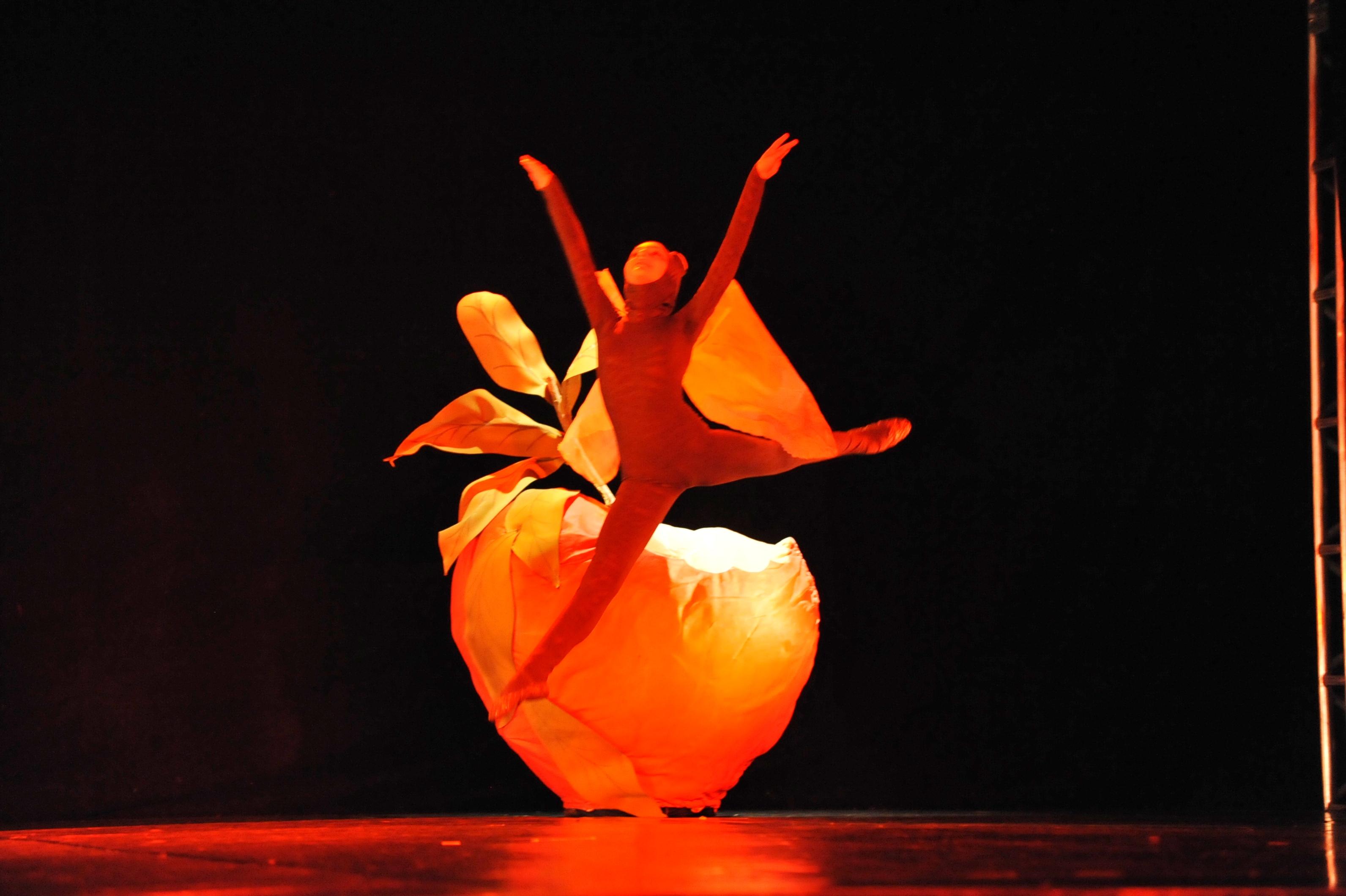 Ballet Margô Brusa